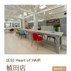 [ES] Heart of HAIR 植田店